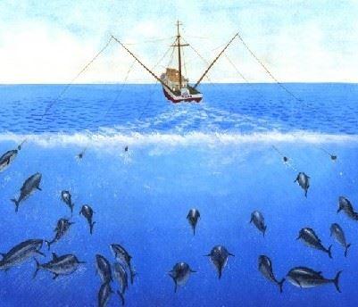 Concurso pesca octubre 2010