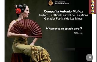 Espectáculo de flamenco en Jávea