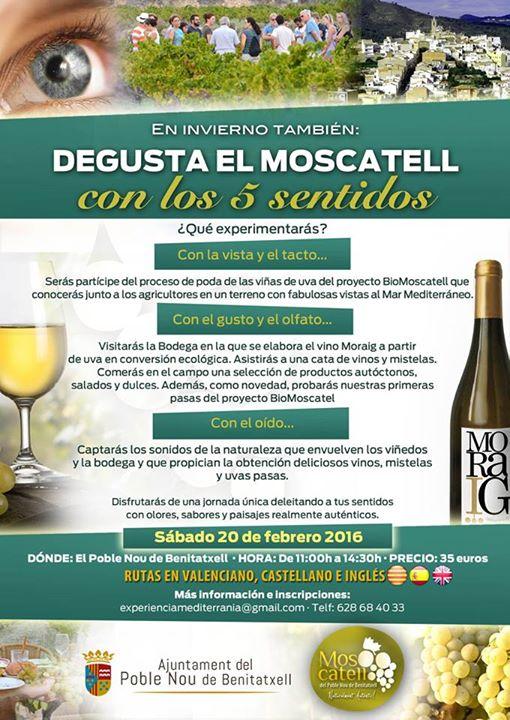 Ruta Degusta el Moscatell con los 5 sentidos