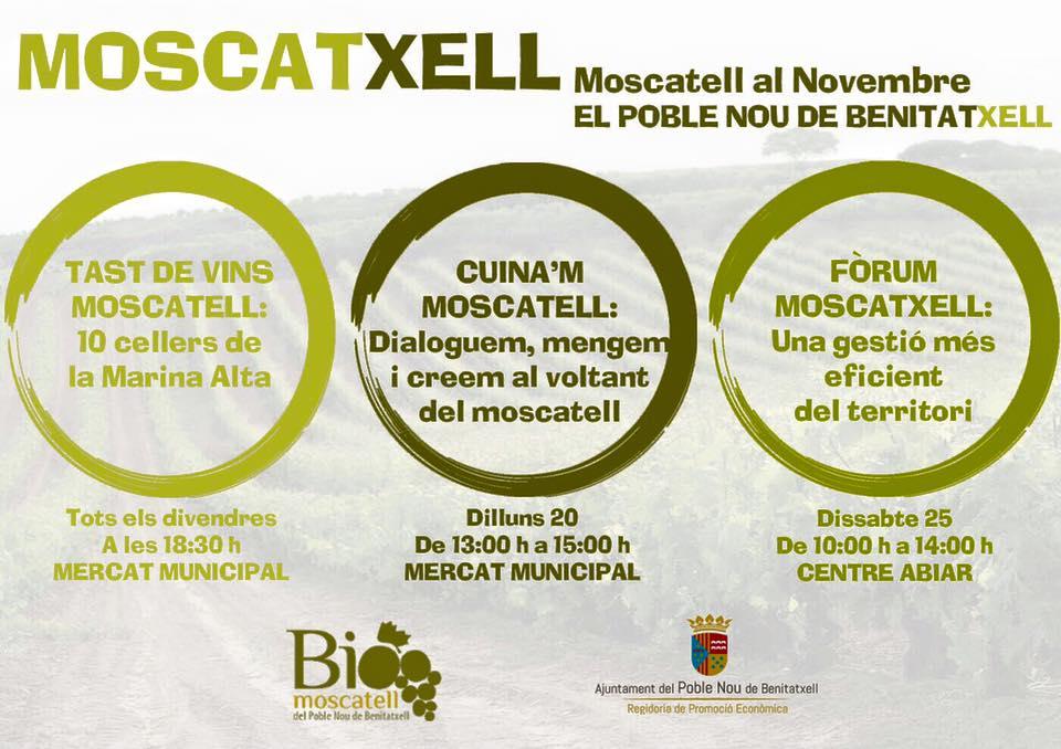 En Noviembre descubre el moscatell en Benitatxell.